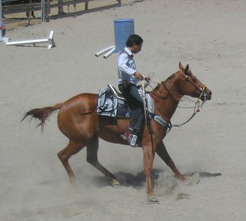 http://www.niceboots.org/~evergrey/horsestuff/Show0808/reiningguy2.jpg