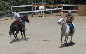http://www.niceboots.org/~evergrey/horsestuff/Show0808/sillystring1.jpg