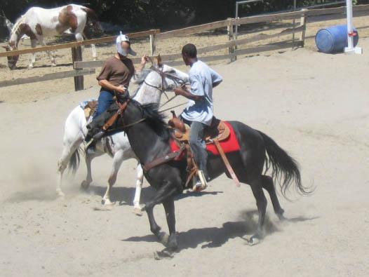 http://www.niceboots.org/~evergrey/horsestuff/Show0808/sillystring2.jpg