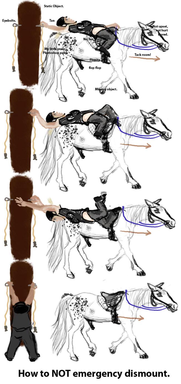 http://www.niceboots.org/~evergrey/horsestuff/ambien/dismountfail1.jpg